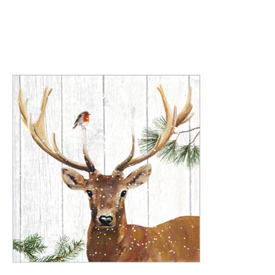 Robin & Deer papírszalvéta 25x25cm, 20 db-os