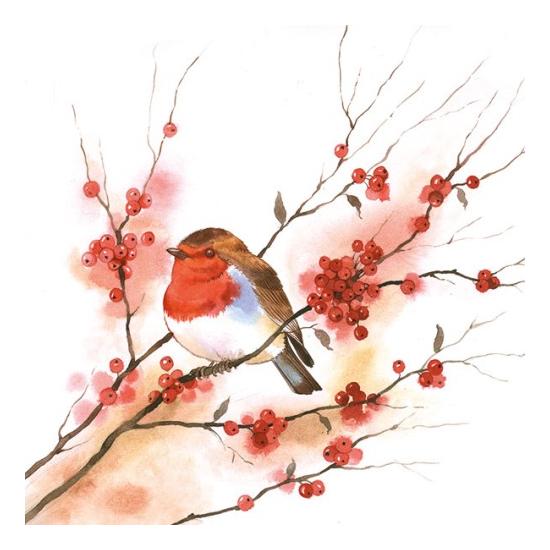Birdy Robin papírszalvéta 33x33 cm, 20 db-os