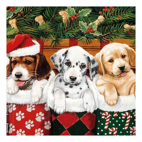 Doggies papírszalvéta 25x25 cm, 20 db-os
